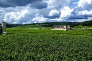 Burgundy climats