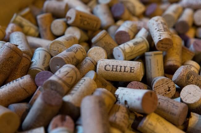jefford chile wine