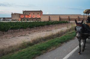 Torres Purgatori winery