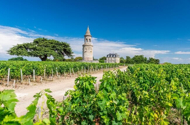 Chateau La Tour de By wines