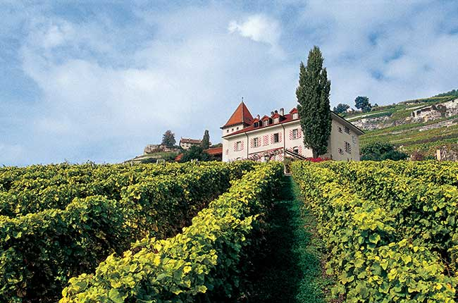 Lausanne Best of Wine Tourism award