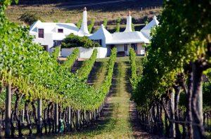 Te Mata Coleraine wines