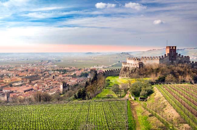 Best Veneto Wine