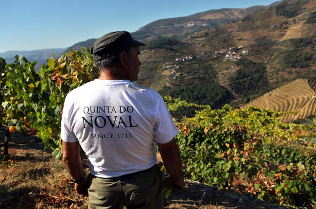 Quinta do Noval Port