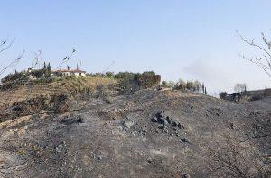 Malibu coast fire