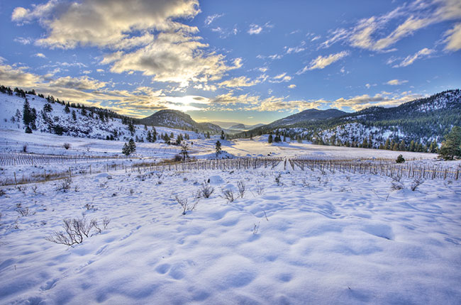 Garnet Valley Ranch