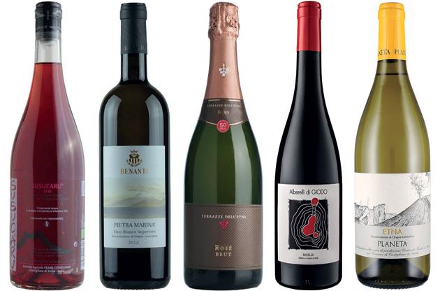 Sicily wines