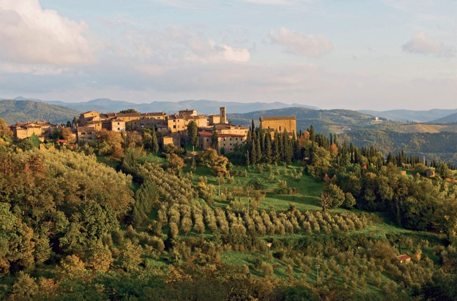 Tuscany vintage report