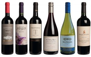 Best South American Wines