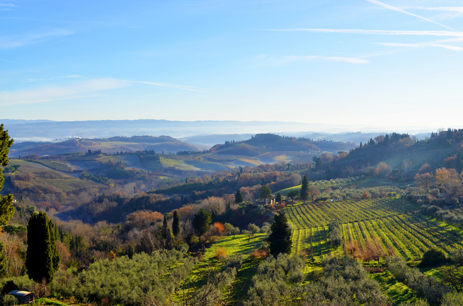 Best Tuscan Wines