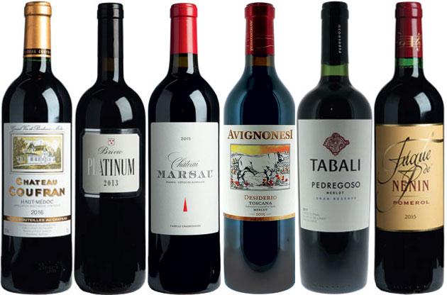 Merlot wines