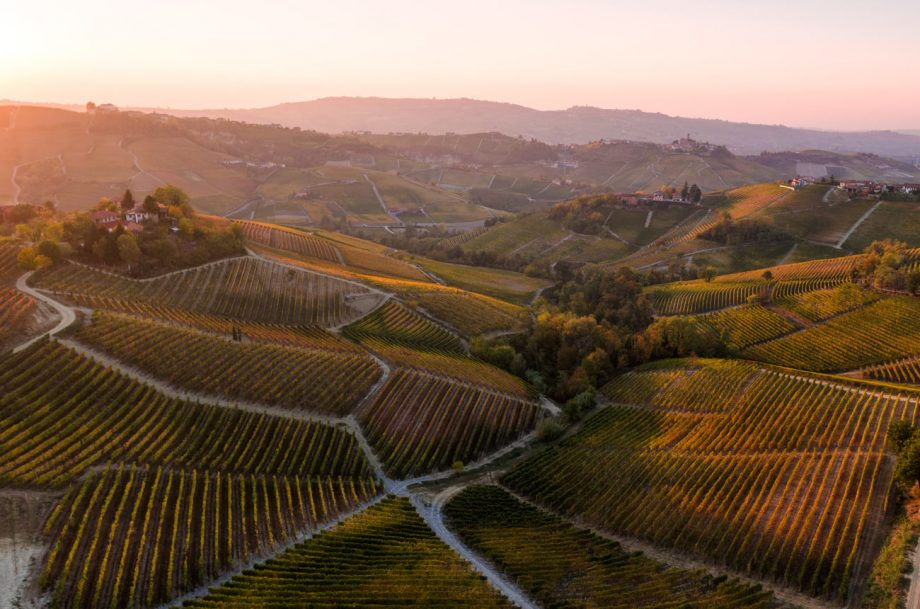 Barolo wine region