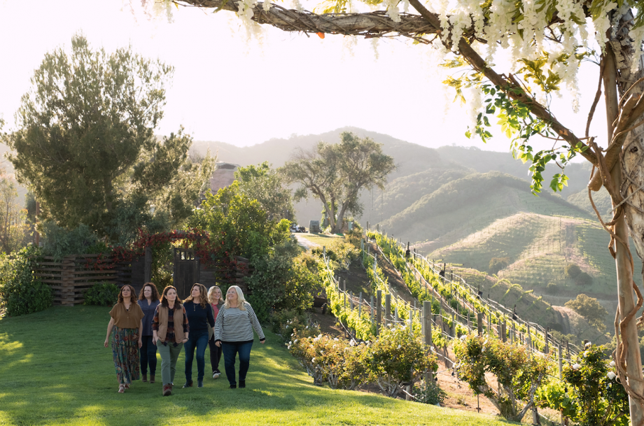 Wine Country film review