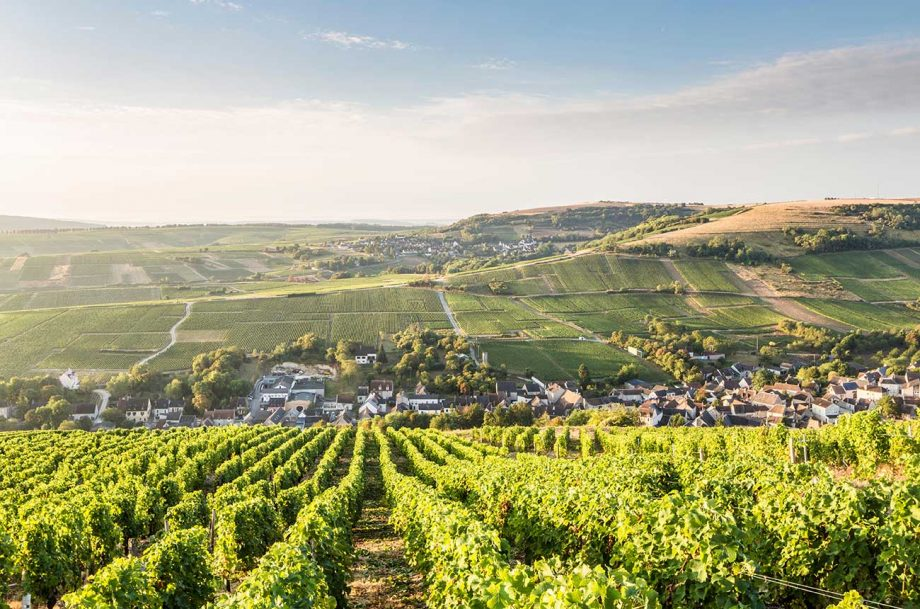 The home of Sancerre wine