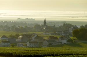 Côte des Blancs wineries