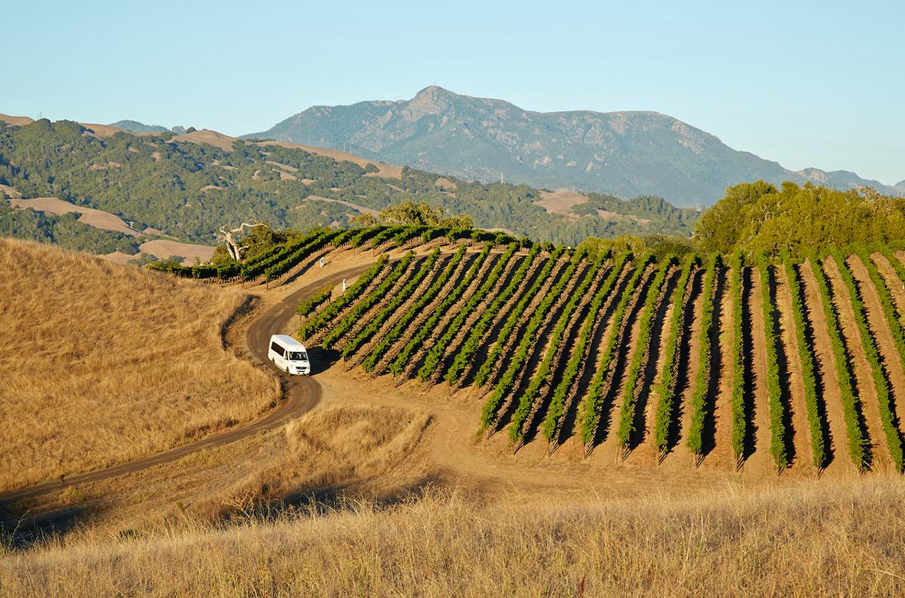Top Healdsburg wineries to visit - Decanter