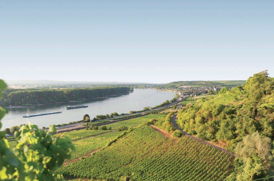 Roter Hang, the red sandstone slopes that lie between Nierstein and Nackenheim