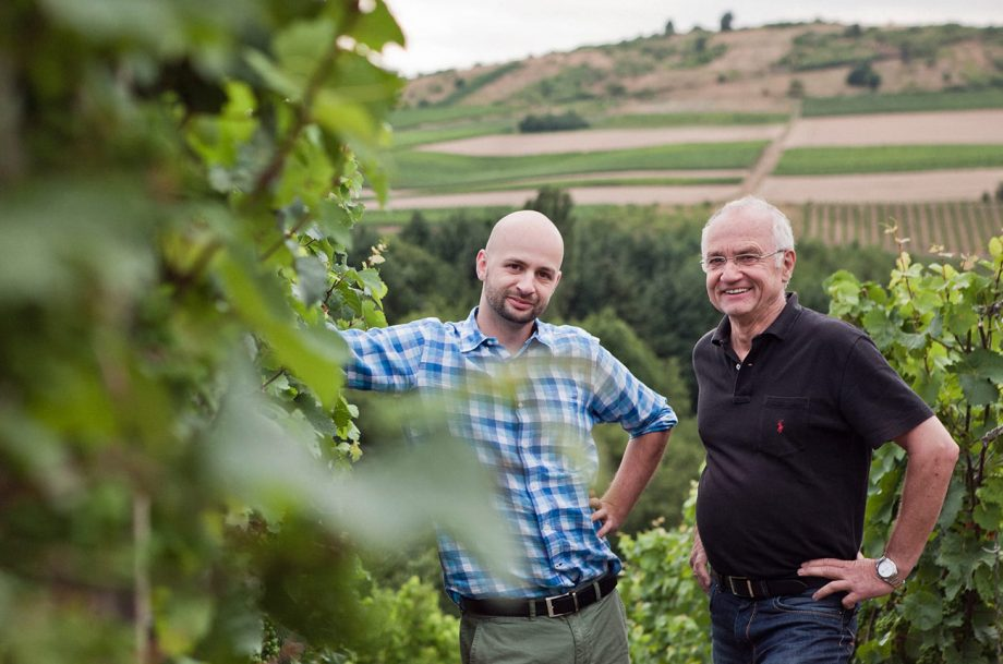Dönnhoff profile and top wines