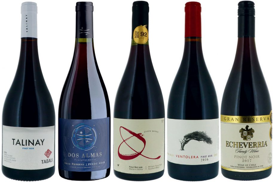 Chilean Pinot Noir wines