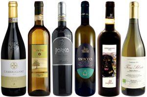 Le Marche wines