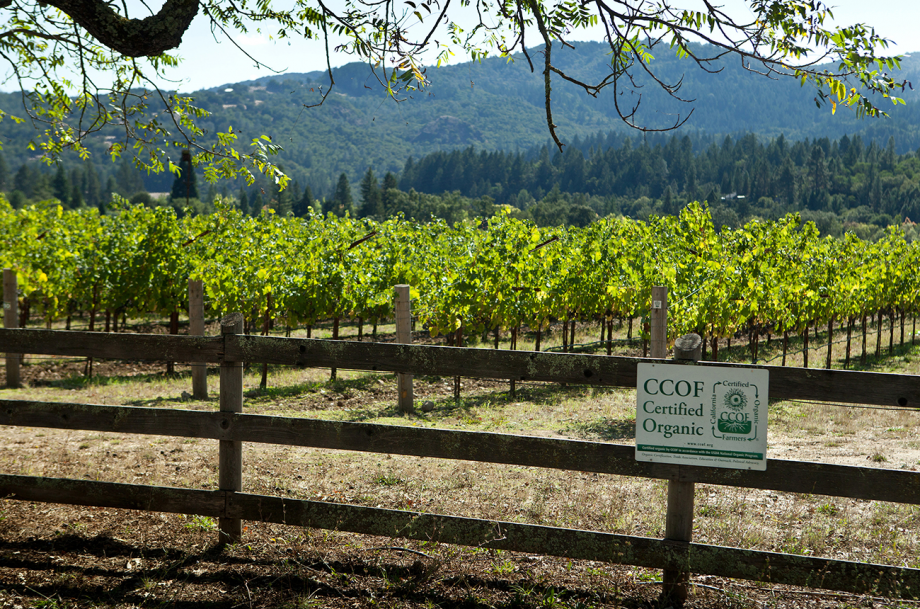 Napa Organic wineries