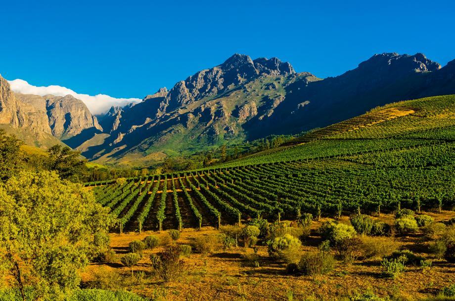 Stellenbosch Cabernet Sauvignon