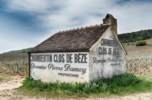 Best Burgundy Vineyards