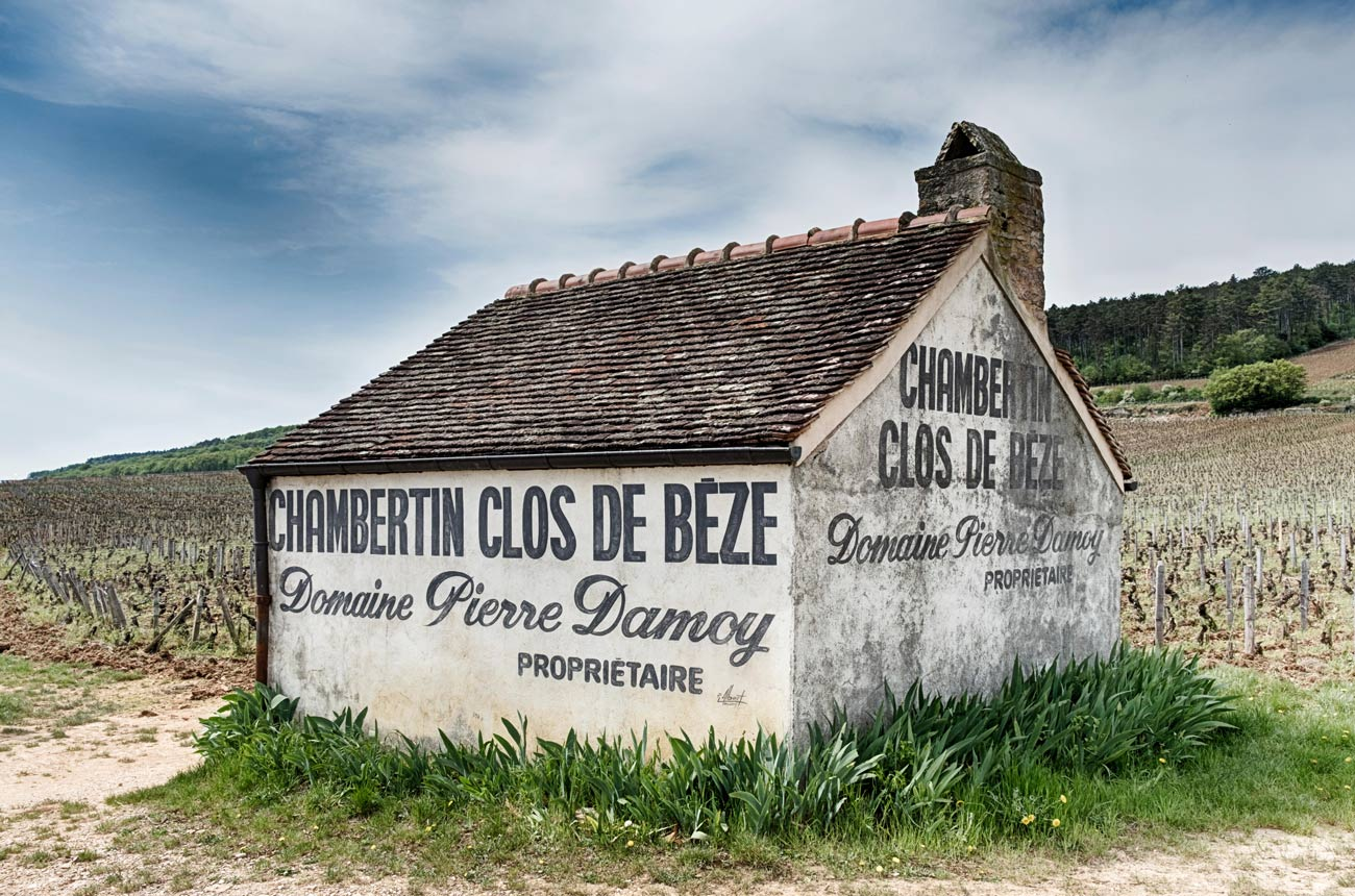 Identifying the best Burgundy vineyards - Decanter