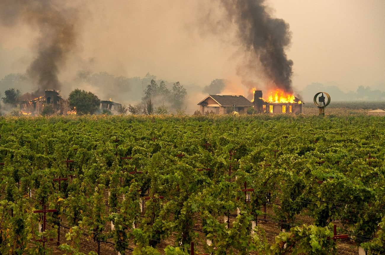 Sonoma wineries fight perceptions as well as wildfire risk - Decanter