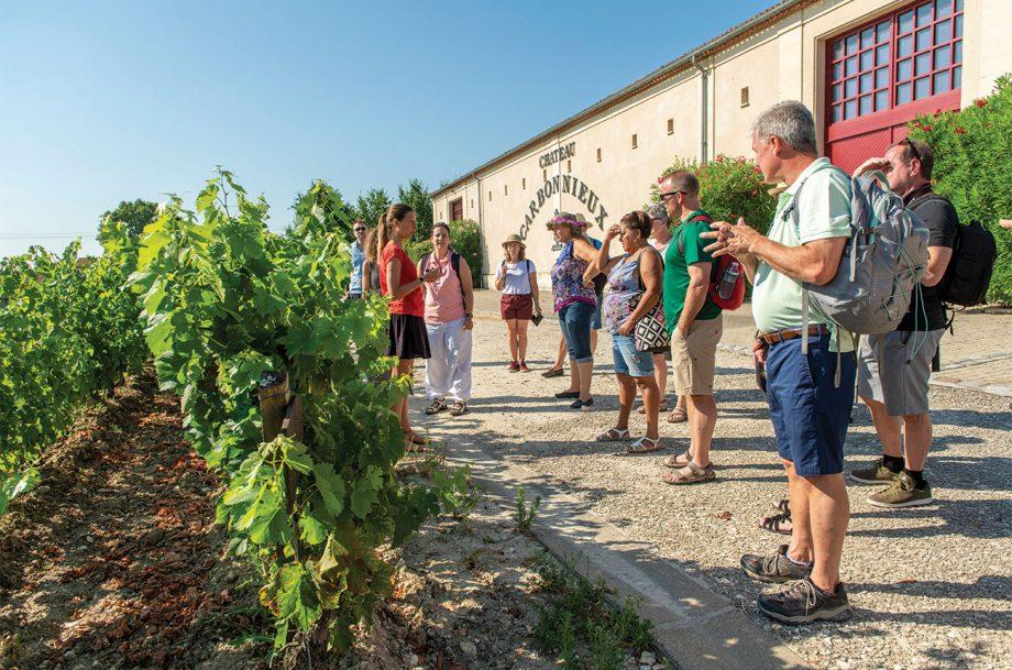 Bordeaux châteaux to visit