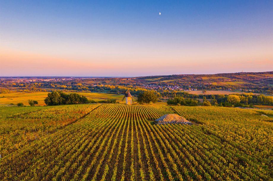 Burgundy 2018 report
