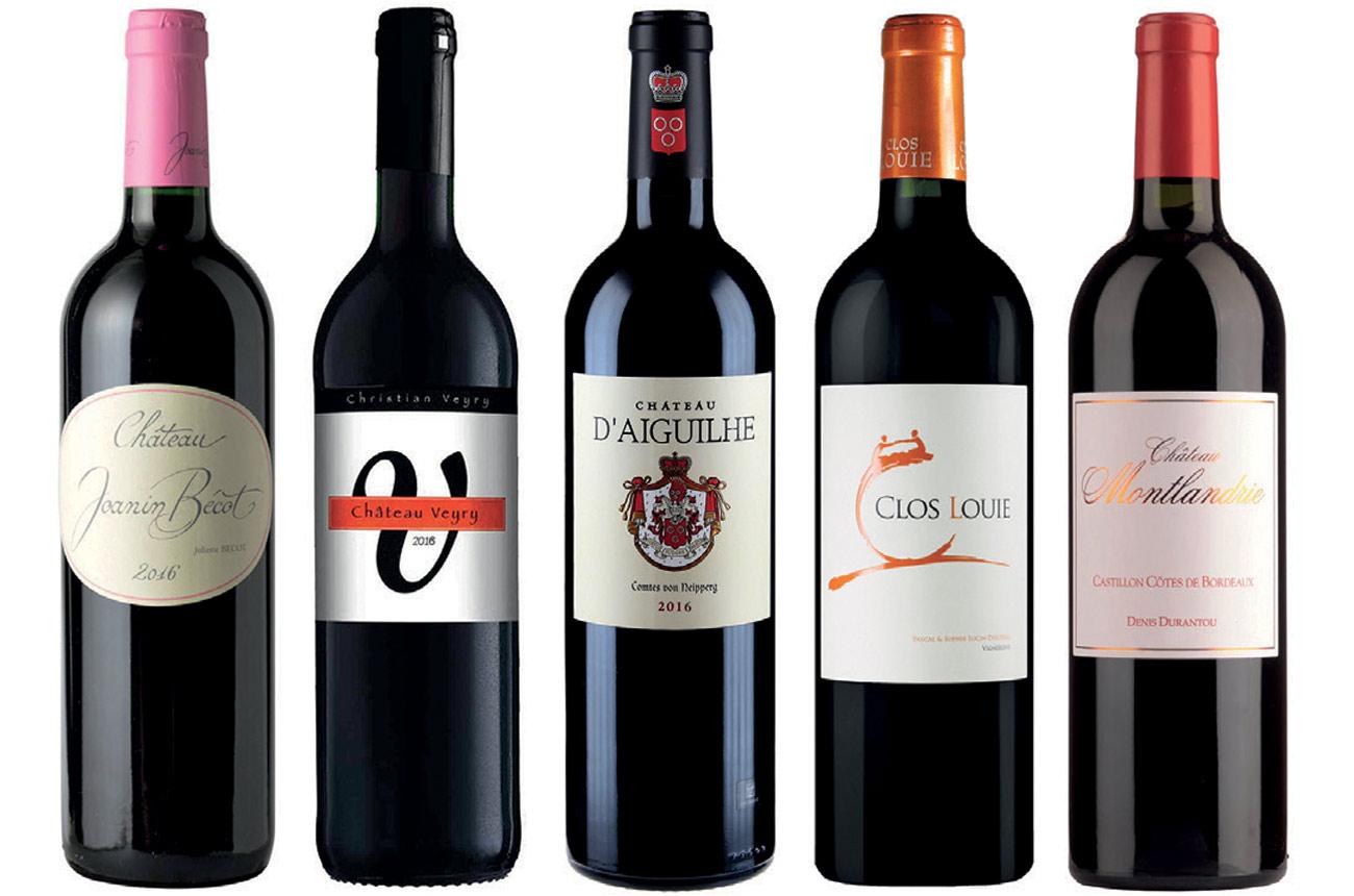 Expert's Choice: Castillon Côtes de Bordeaux 2016