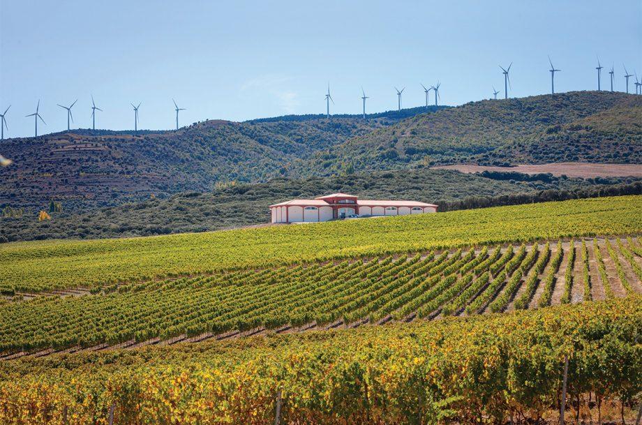 El Coto De Rioja Finca Carbonera