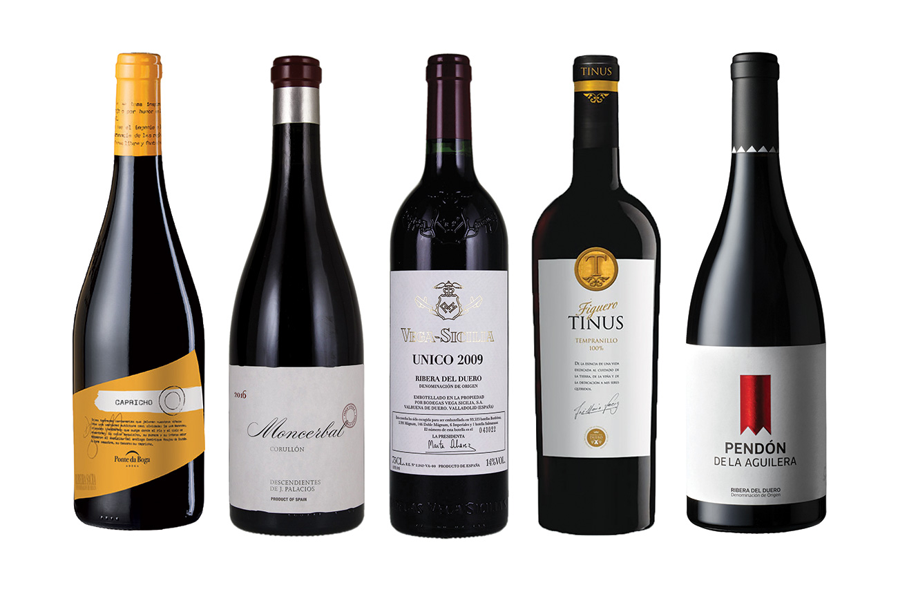 A selection of top wines from Northern Spain - Decanter
