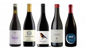Top Spanish Garnacha: Ten to try