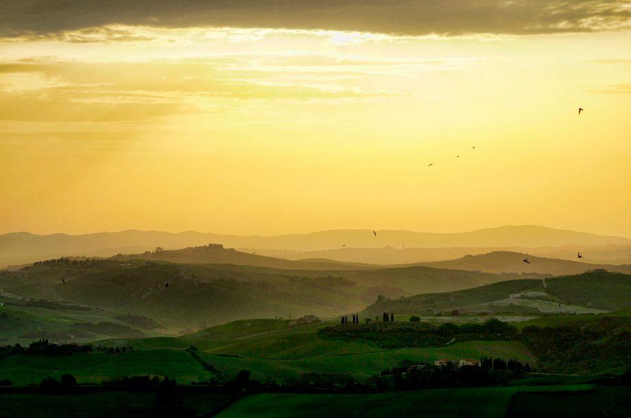 . Tuscan landscape. Le Serre Nuove dell'Ornellaia