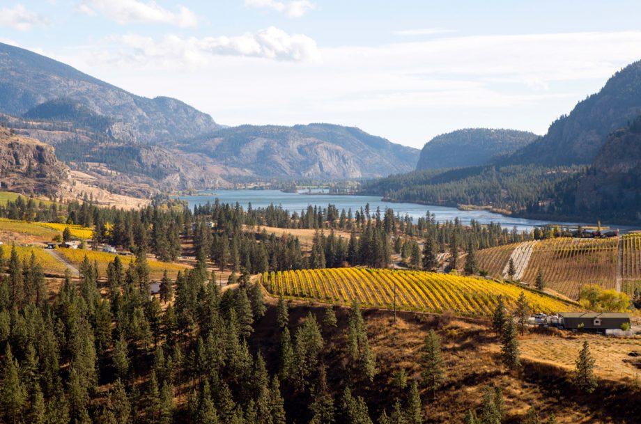 Okanagan: Canada's global wine region