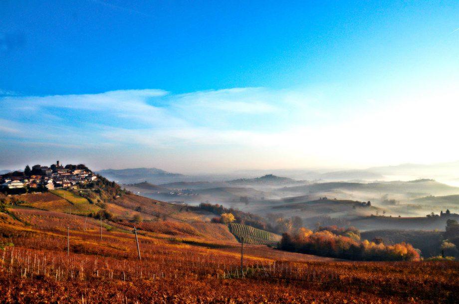Pelaverga-verduno-Piedmont