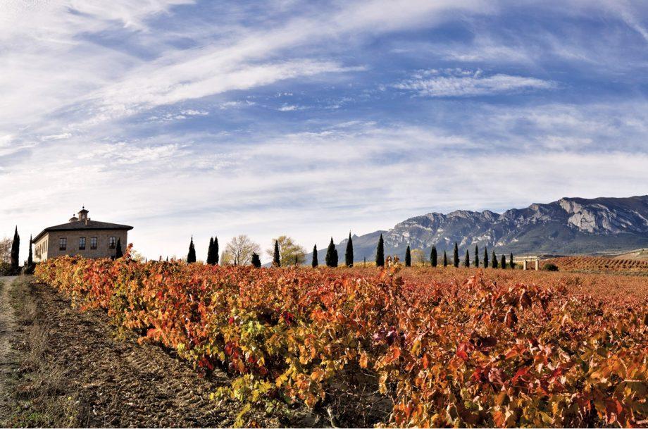 La Rioja Alta, Torre de Ona vineyard