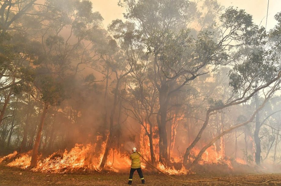 australian fires vineyards
