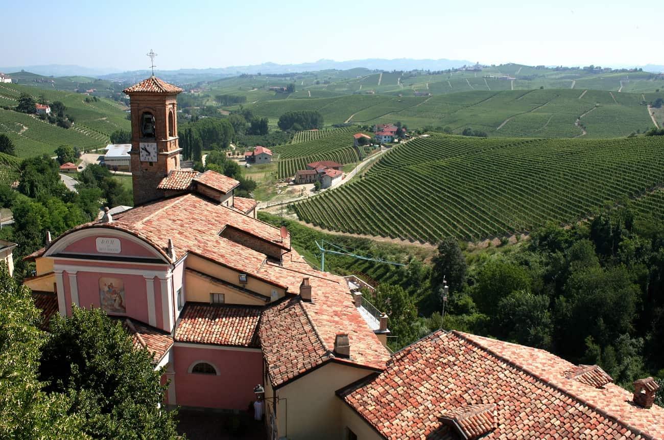 Barolo winery Rivetto gets biodynamic certification - Decanter