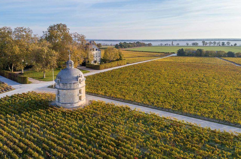 bordeaux 2017 wines