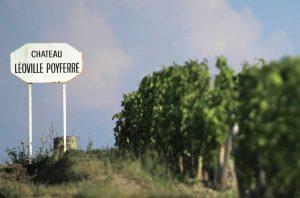 St-Julien 2017 wines