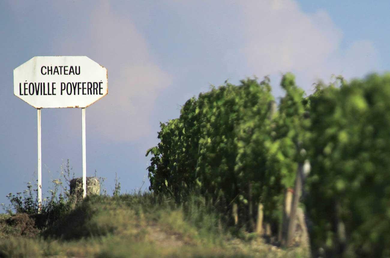 St-Julien 2017 wines: Re-tasted in bottle - Decanter