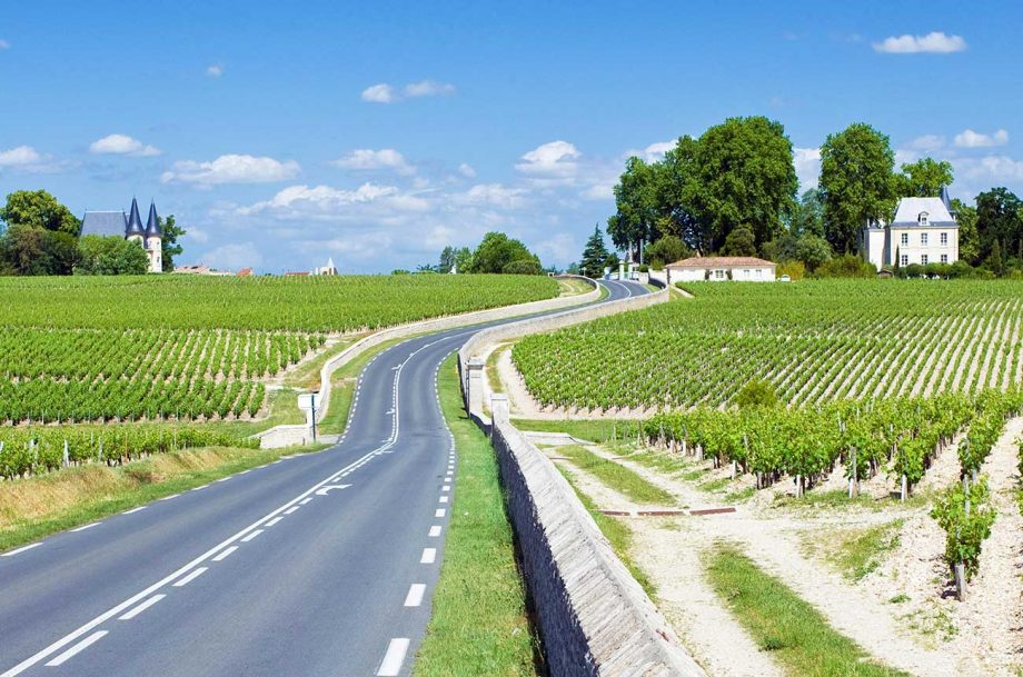 Pauillac 2017 wines
