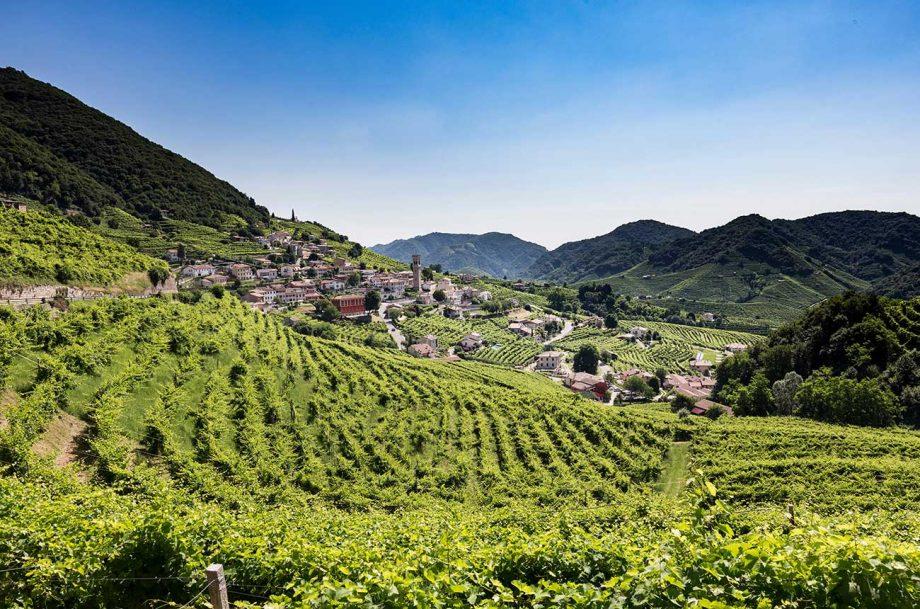 wine tour ideas