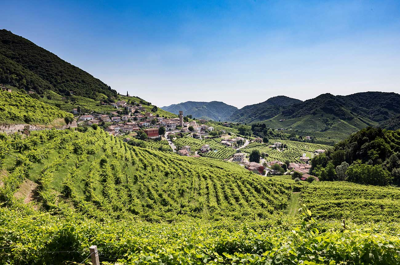Wine tour ideas: Six of the best for 2020 - Decanter