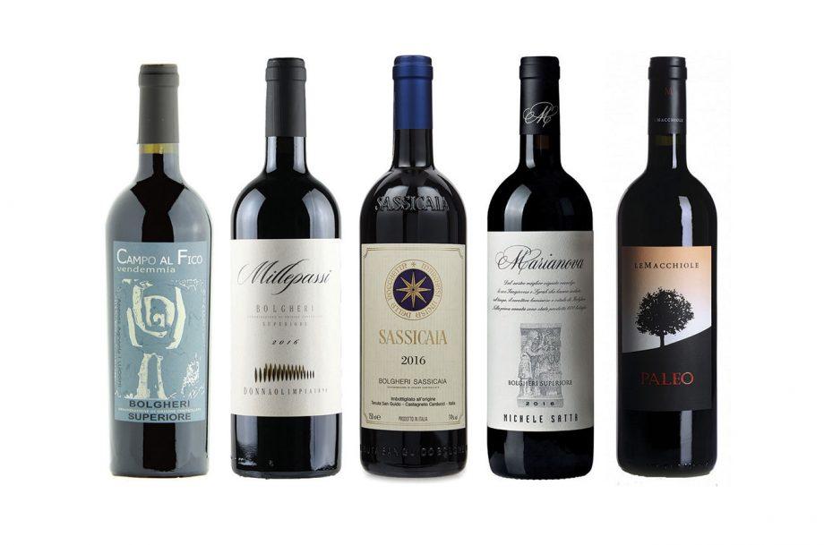 Bolgheri wines