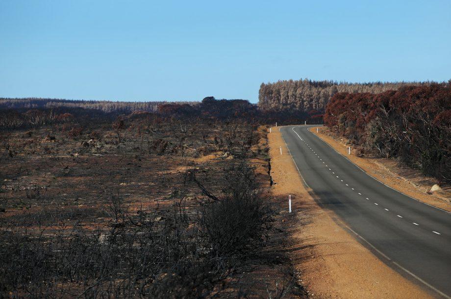 Australian vineyard bushfires