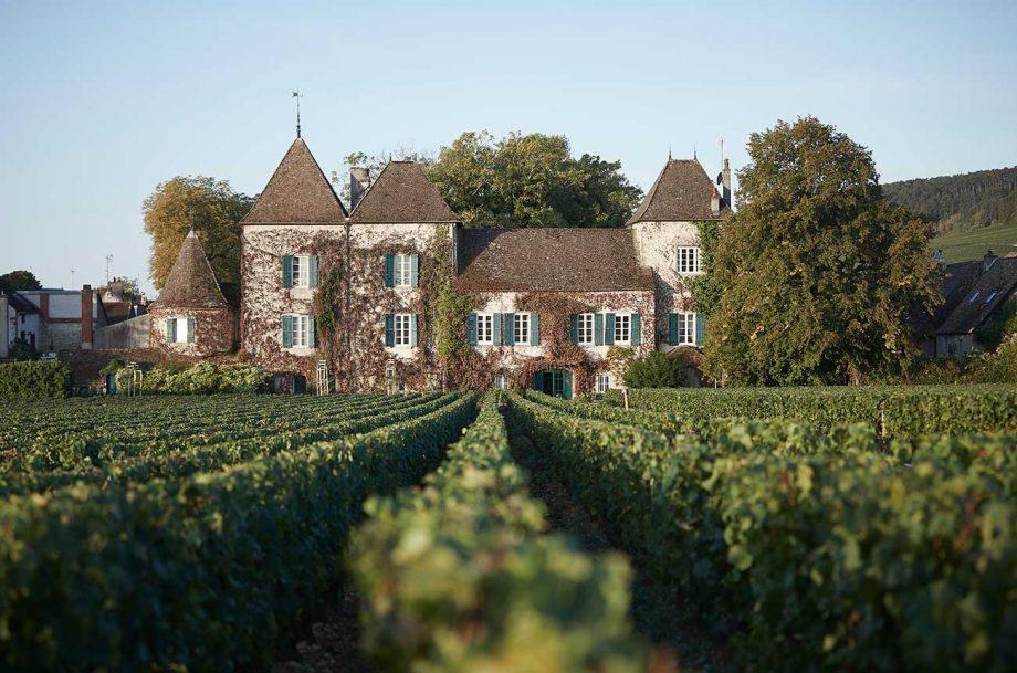 burgundy commaraine